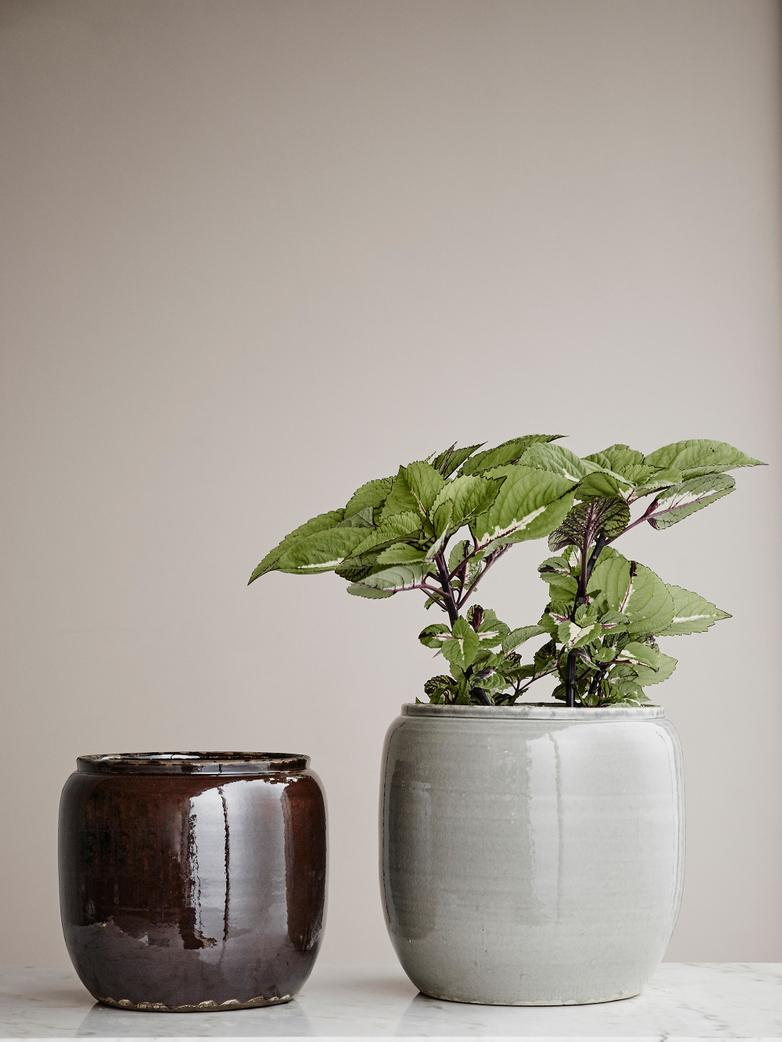 Costa Pot - Grey