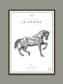 Le Cheval No.3