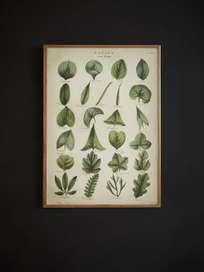 Poster Leaf