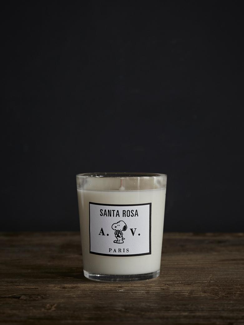 Santa Rosa Scented Candle