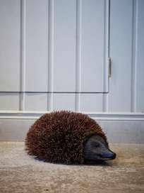 Door Mat Hedgehog