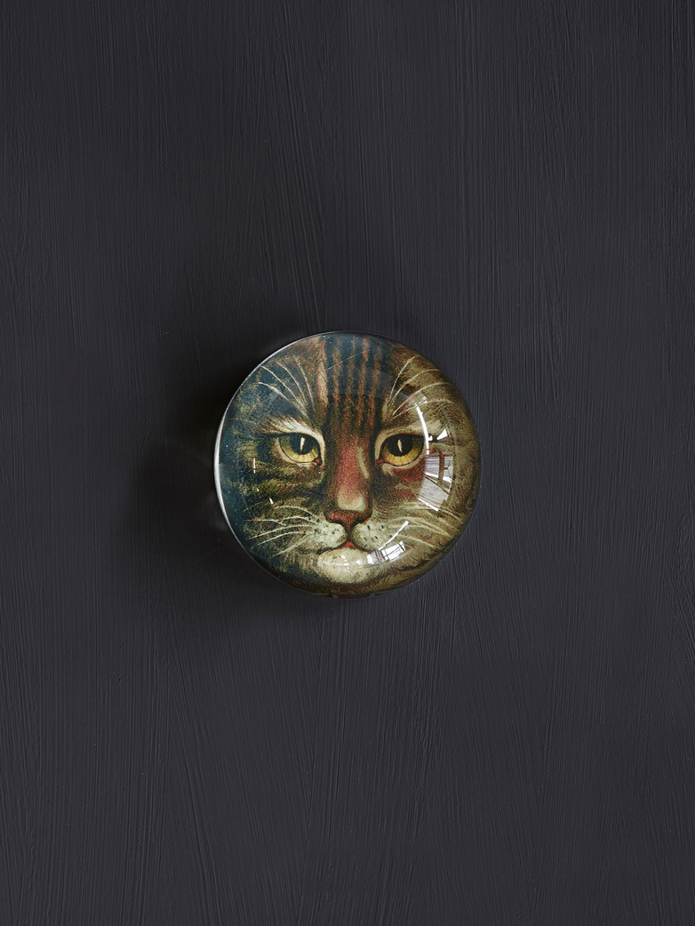 Country Cat Dome Paperweight