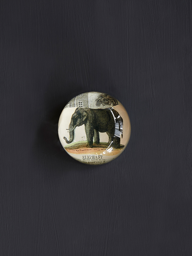 Elephant Collage Dome Paperweight