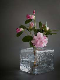 Cube Vase - Clear
