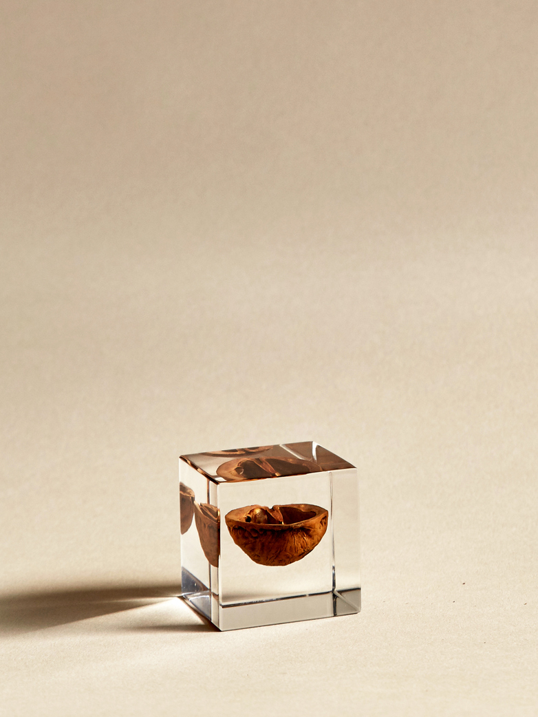 Japanese Walnut Cube