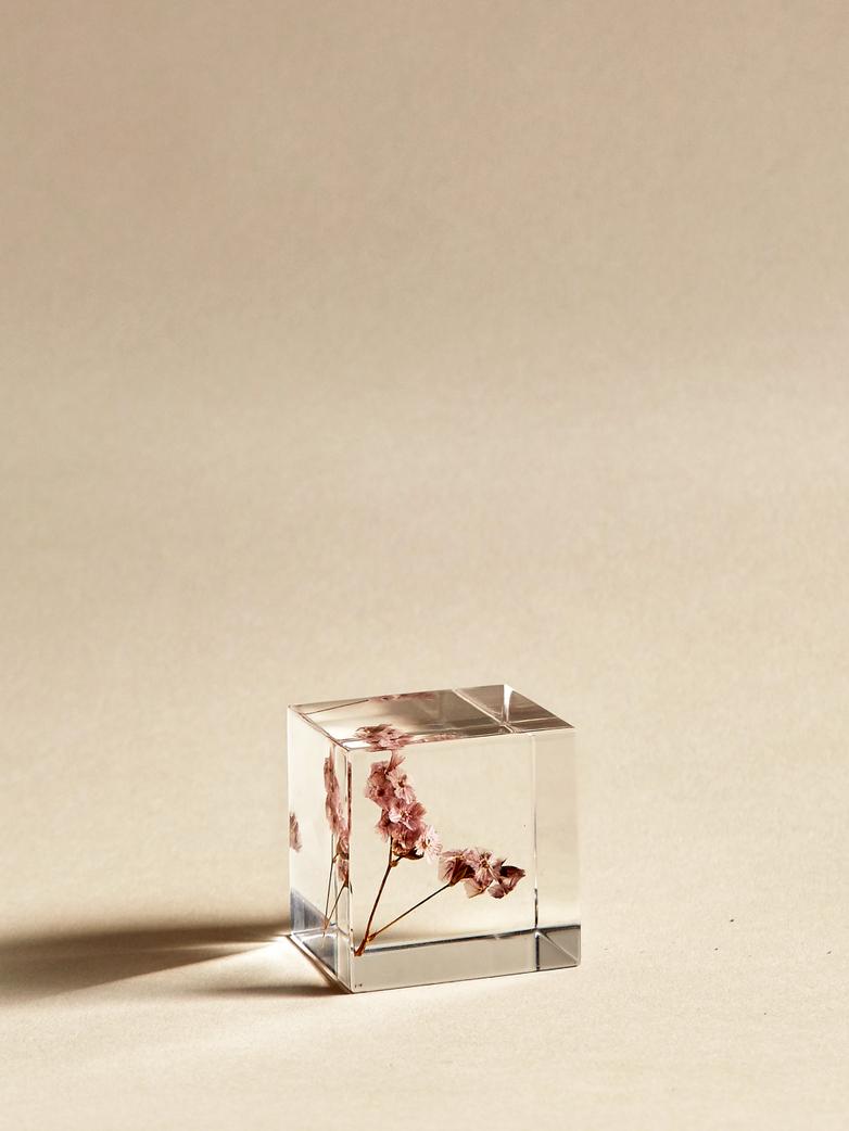Sea Lavender Cube
