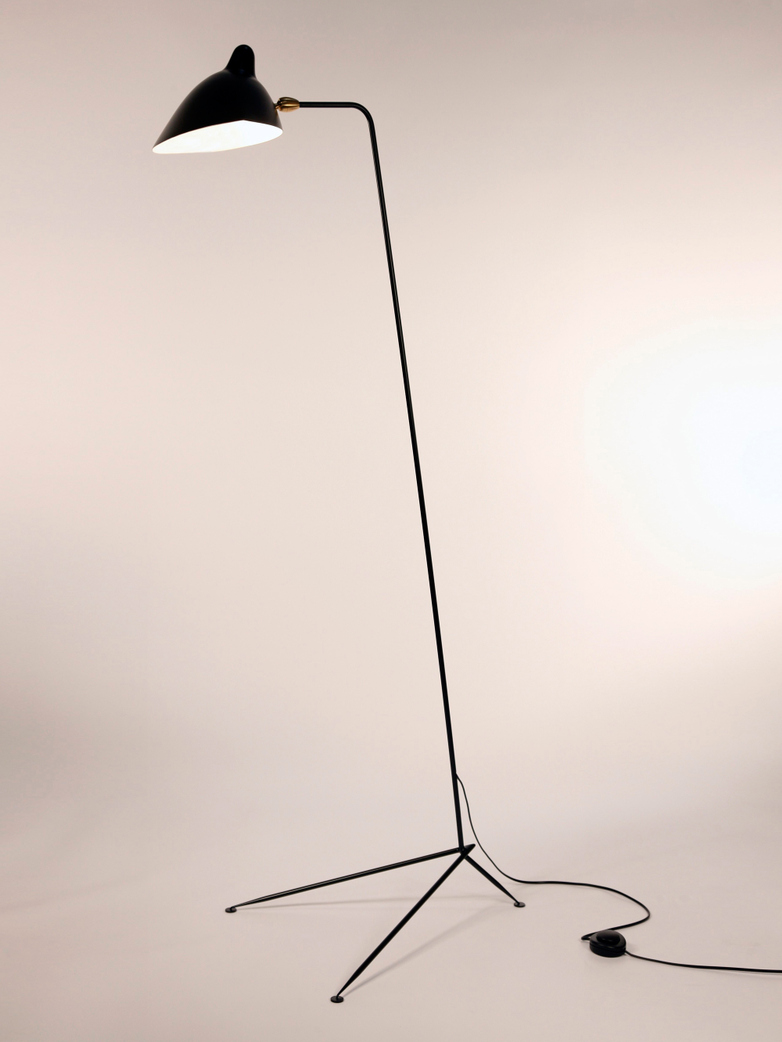 Standing Lamp with One Arm