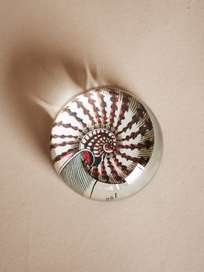 Paperweight Dome – Nautilus