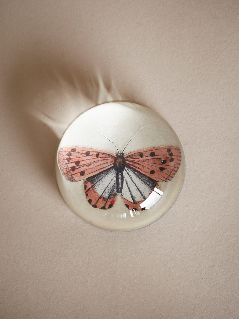 Paperweight Dome – Coral Butterfly