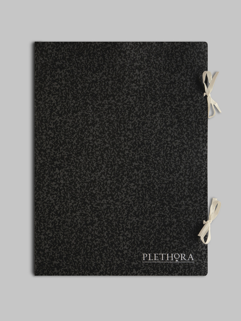 Plethora Magazine Issue No 10