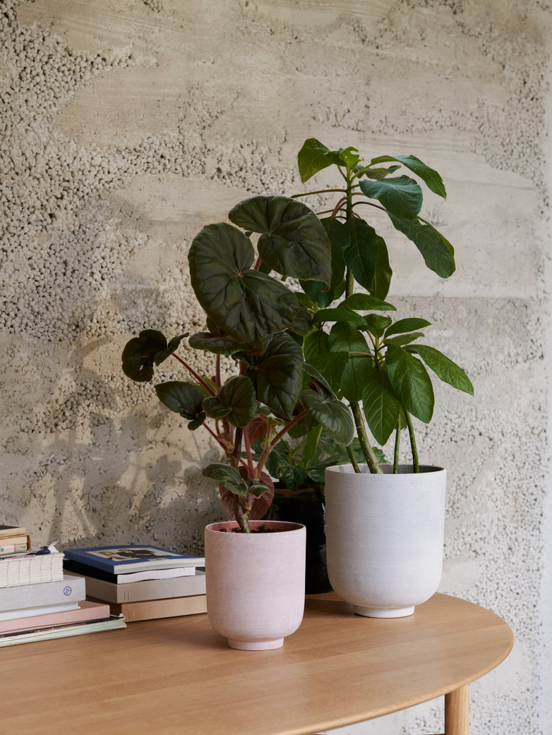 Collect Planter Pot Small - Ochre
