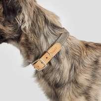 Collar Tivoli - Canvas/Leather - Greige