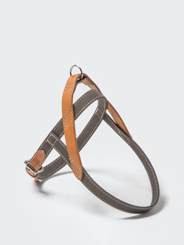 Harness Tivoli - Greige