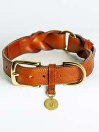 Hyde Park Collar - Cognac