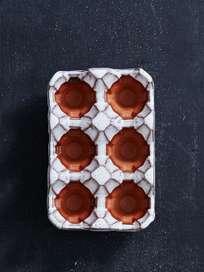 Egg Rack 6